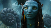Avatar Movie...To Visit The Official Avatar Website...