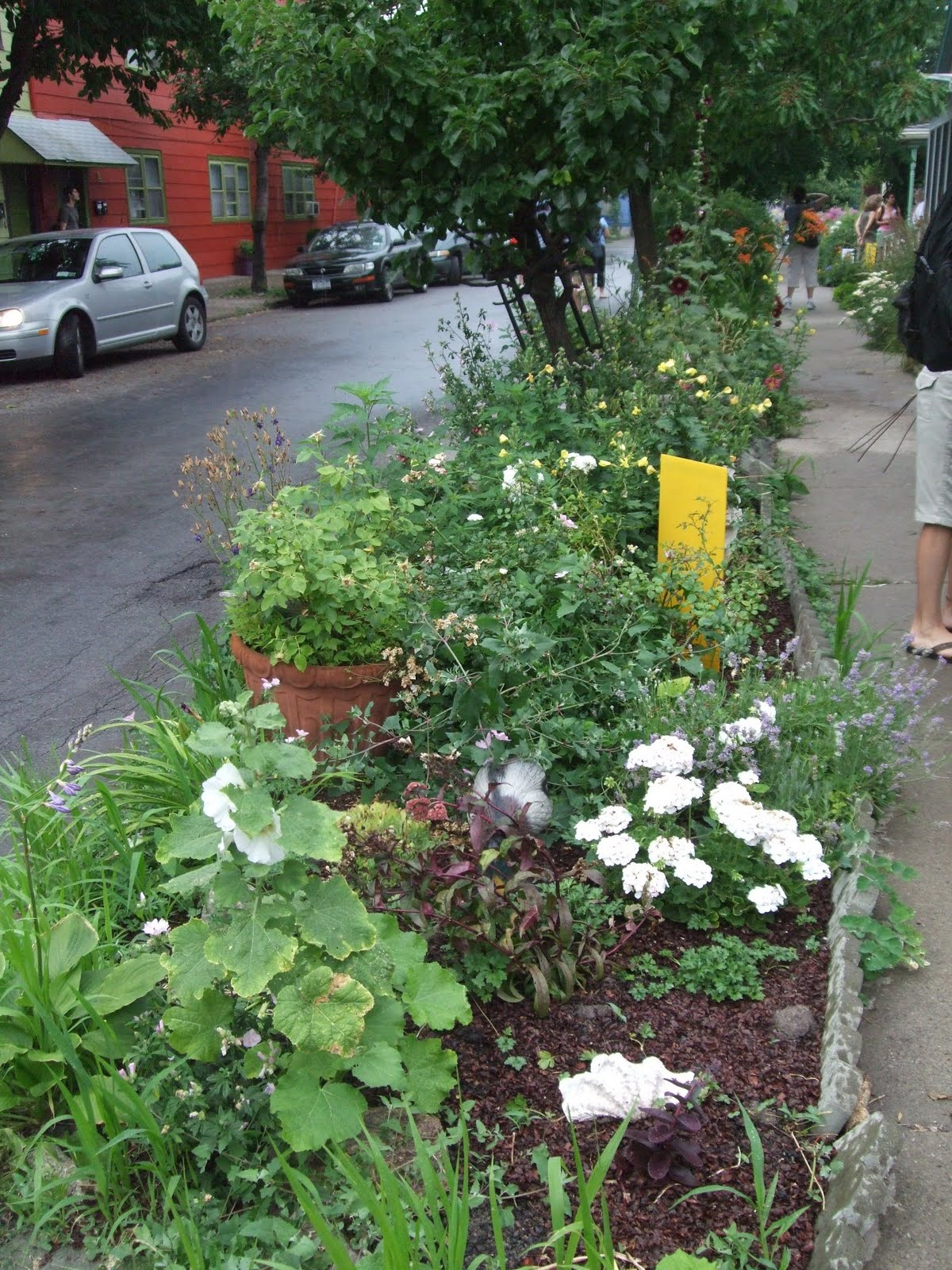 """Garden Walk Mall: Pat And Jim's Gardening Adventure: """"Horto In Urbe' Means"""