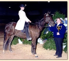 Guinness' half brother:  Barb's Stormy Knight, versatility champ!