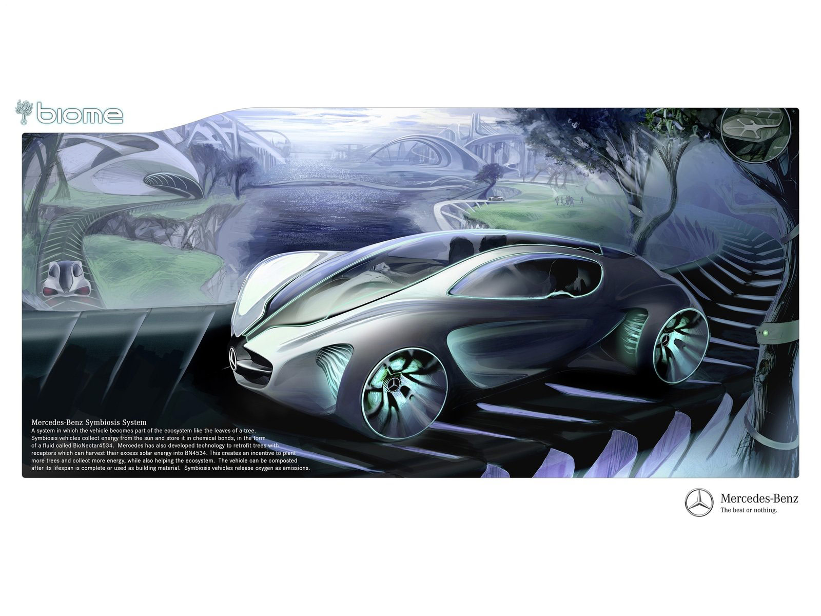Toyota Carlsbad Service >> 2010 MERCEDES BENZ Biome Concept accident lawyers info