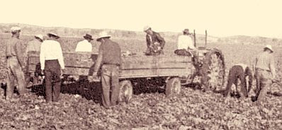 Mexican laborers