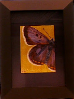 copper butterfly