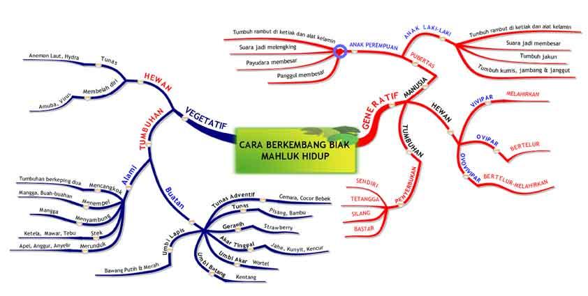 Kumpulan Mind Mapping Materi Pelajaran IPA SD