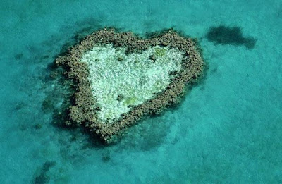 قلوب طبيعية