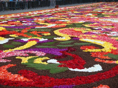 [Image: Flower_Carpet_04.jpg]