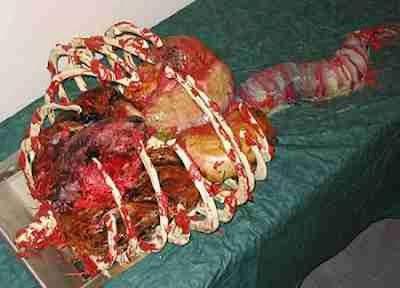 Kueberbentuk Organ Tubuh Manusia