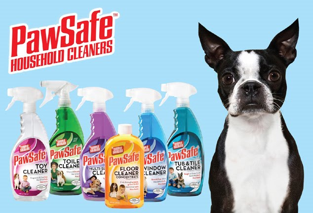 Floor Cleaner Safe For Pets Walesfootprint Org