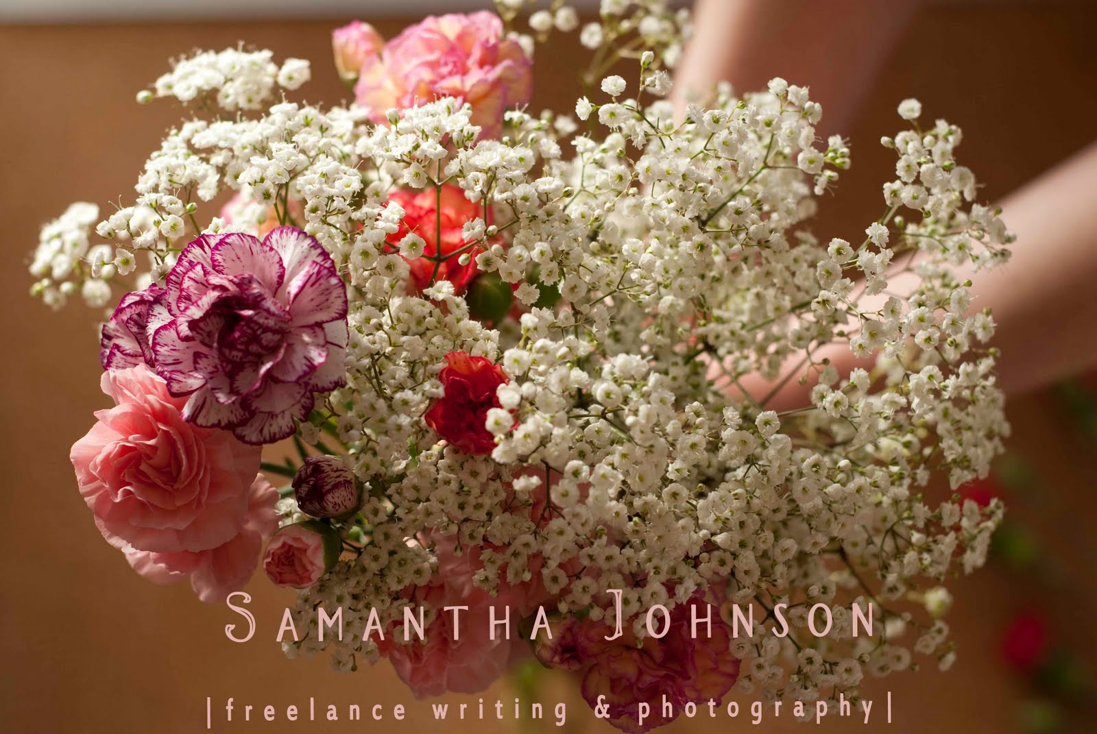 Samantha Johnson, Freelance Writing, Editing, & Photography