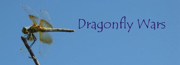 Dragonfly Wars header
