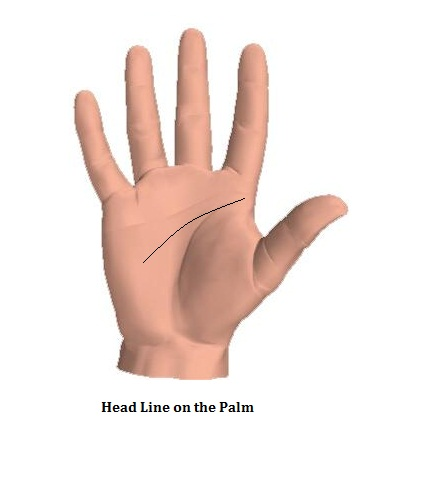 Head Lines On The Palm on Zodiac Ruling Body Parts