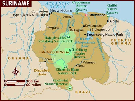 597 country code suriname country code sr area codes and