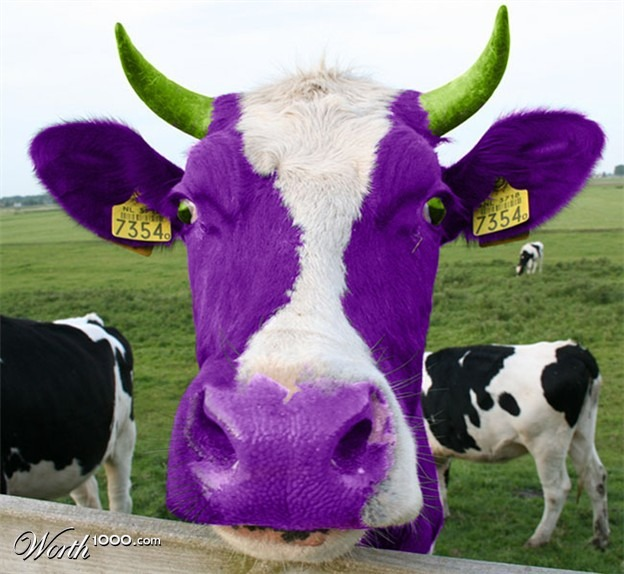 Purple Cow Smoothie recipe