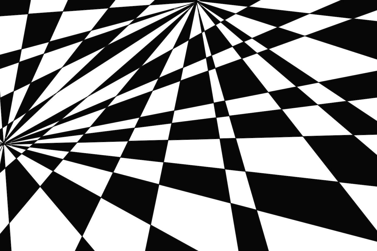graphic art 2010: Elizabeth James Optical Illusion