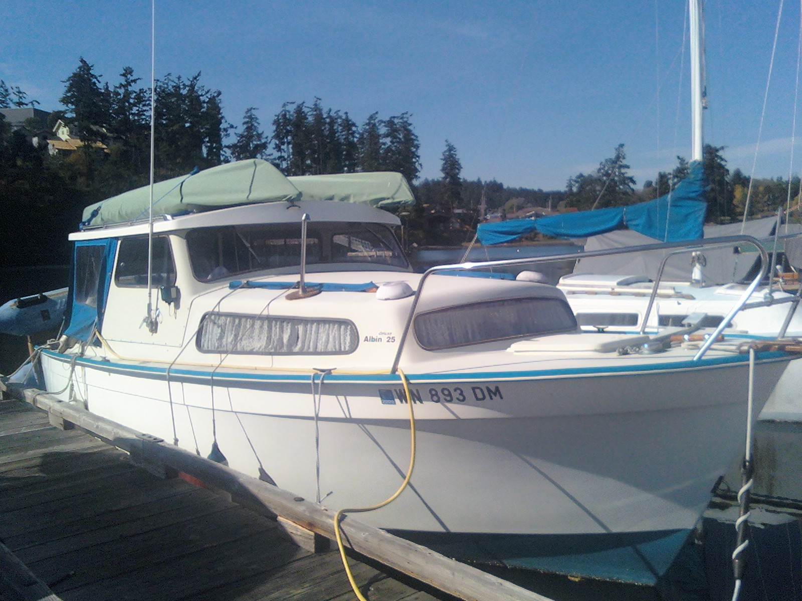 The Adventures Of Shatoosh And Pashmina Albin 25 For Sale Lit L Bit Friday Harbor Wa