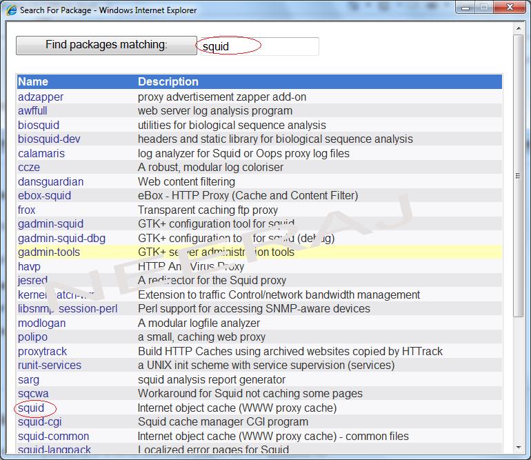 Squid Proxy - Neeraj Sain - Information Technology