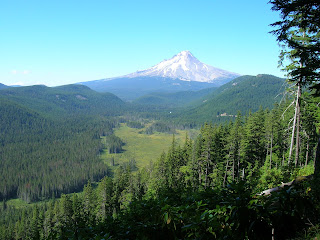 Mount Hood PCT 50 Mile Race Report