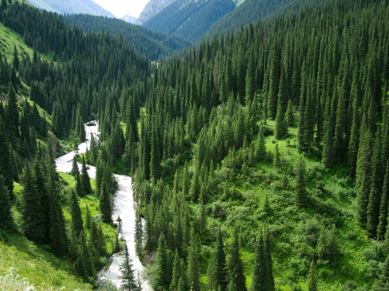 Roger and Luisa's Travel Blog: Karakol Valley, Lake Ala ...