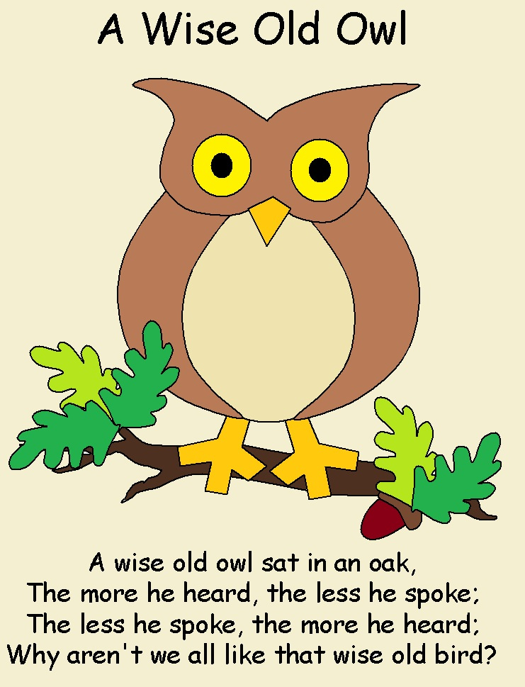 Play With Me: Wise Old Owl Nursery Rhyme