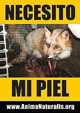 No utilitzis productes d'origen animal