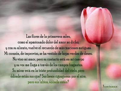 https://4.bp.blogspot.com/_o2BbOwKLkRw/SeIttLVzWfI/AAAAAAAAA0E/tFcpL0tJSu8/s400/Las+Flores+de+la+primavera+salen.jpg