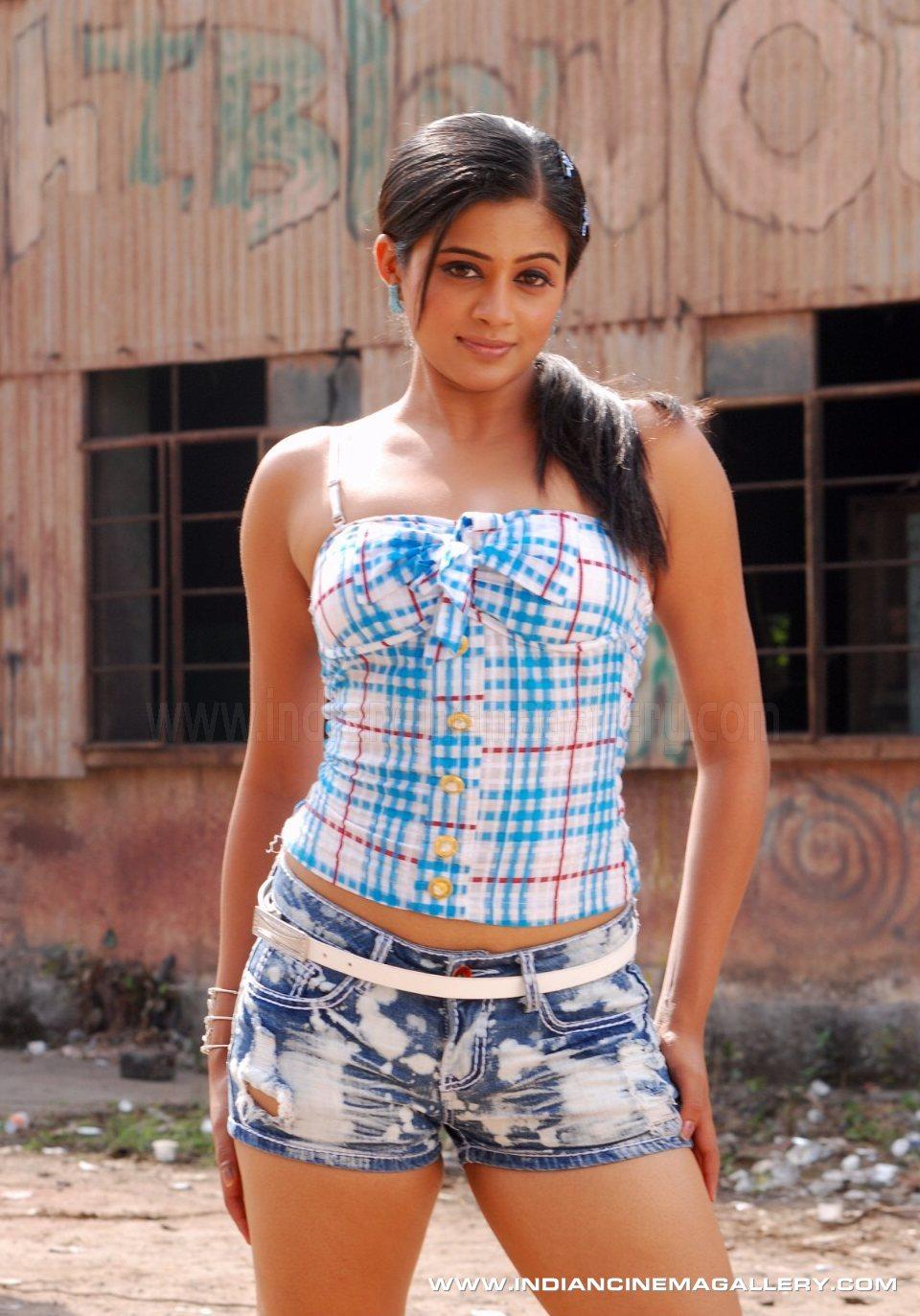 Indian Cinema Gallery South Actress Priyamani Photos -4966