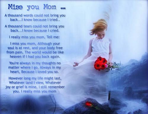 Wish You Were Here Mom Quotes: My Mom