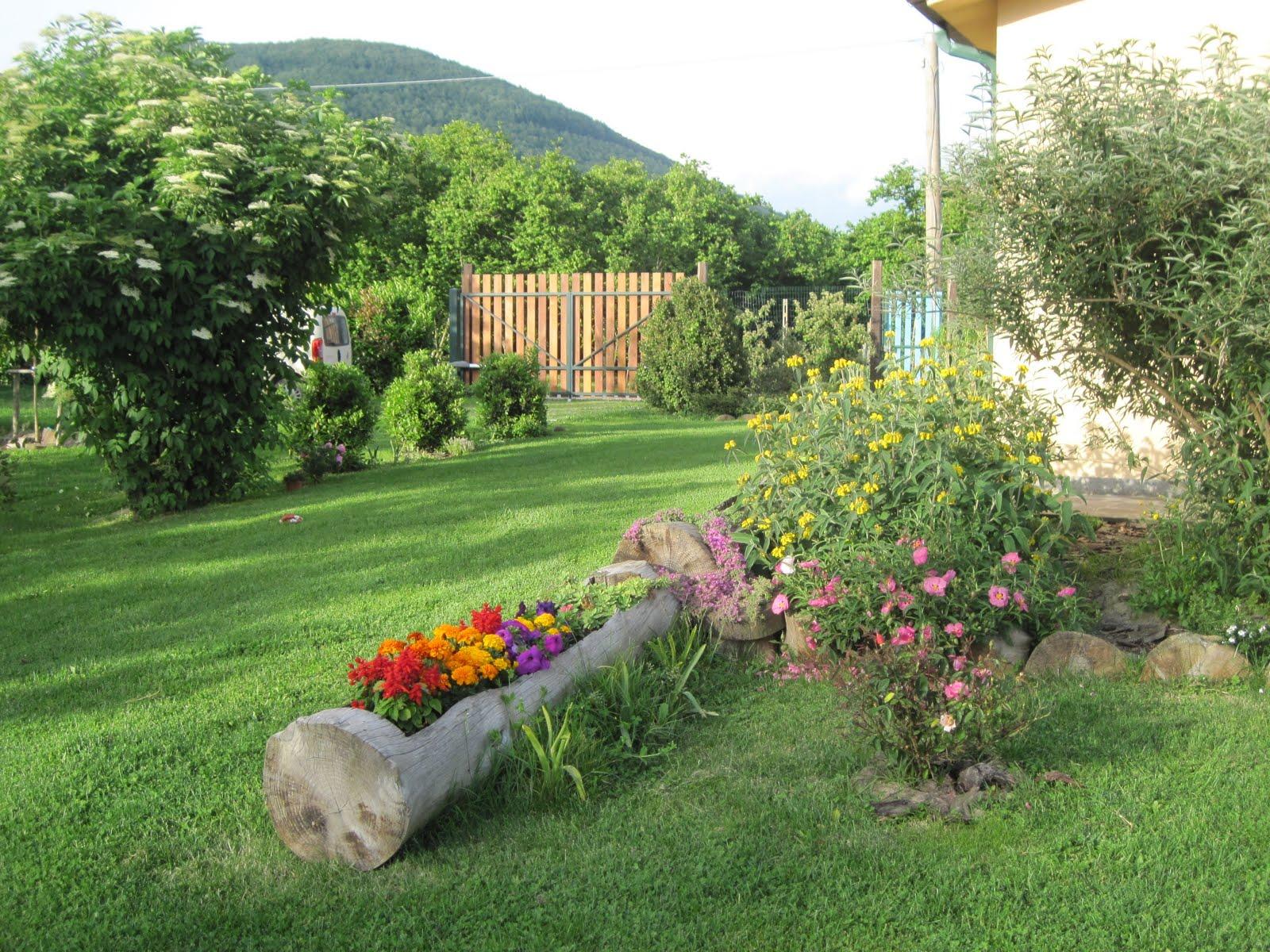 Giardinaggio E Fiori.Il Giardino Sul Lago Raduno Giardinaggio E Fiori 3 7 2010