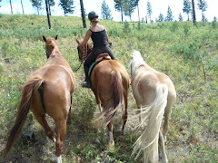 Horsemanship and Trail Riding