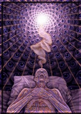 Psychedelic Drugs and Consciousness