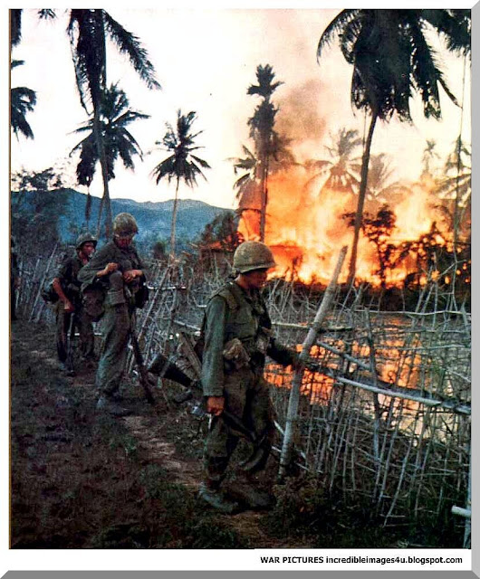 an introduction to the issue of the effects of the vietnam war on its veterans Agent orange newsletter research to improve the well-being of vietnam veterans with war veterans health issues as a part of its eleventh.