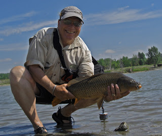 0e9dffba7112b Colorado Fly Fishing Reports  The Carp Addiction