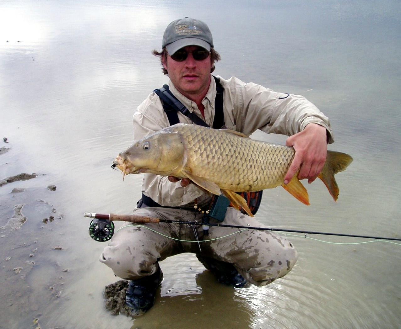 ce9510981cd32 Have the discipline not to fish to every single carp you see. Pick your  battles and focus on specific fish that may be actively feeding or are  displaying ...