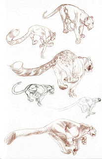 character and creature design notes claire wendling's cats