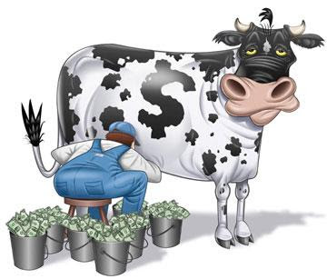 Another Cash Cow