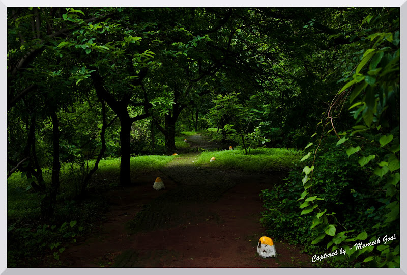 Mahim Nature Park Proposed Methodology