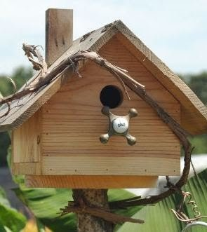 Wild Birds Unlimited Is It Ok To Use Treated Lumber To