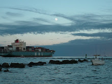 The Mayport Jetties, challenging and exciting.