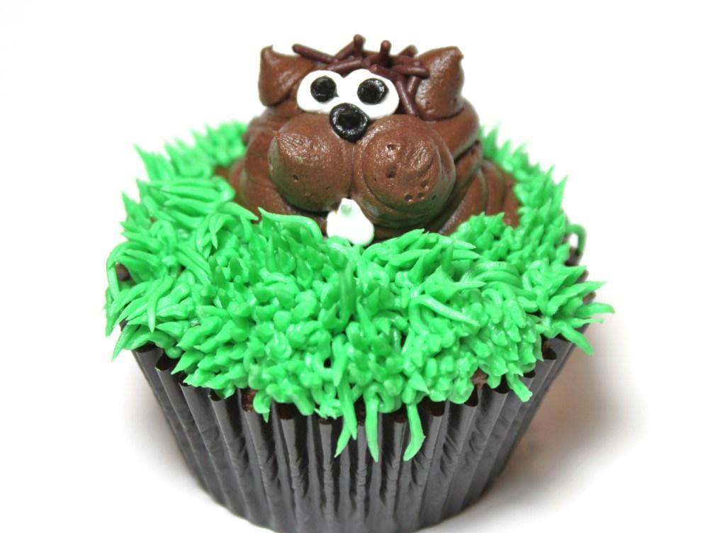 Groundhog Day Birthday Cakes