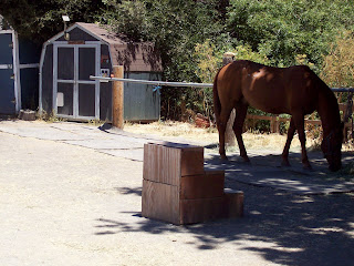 Rancho Ramos RULES!