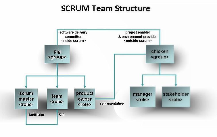 Software Project Team Members