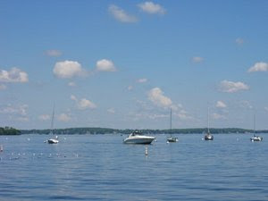 Encounter On Lake Mendota >> Cryptozoo Oscity Lake Mendota Sightings Monster Or Sturgeon