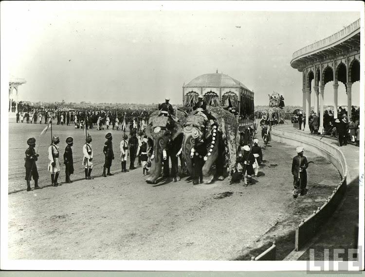 Elephant Carriage of the Maharaja of Rewa