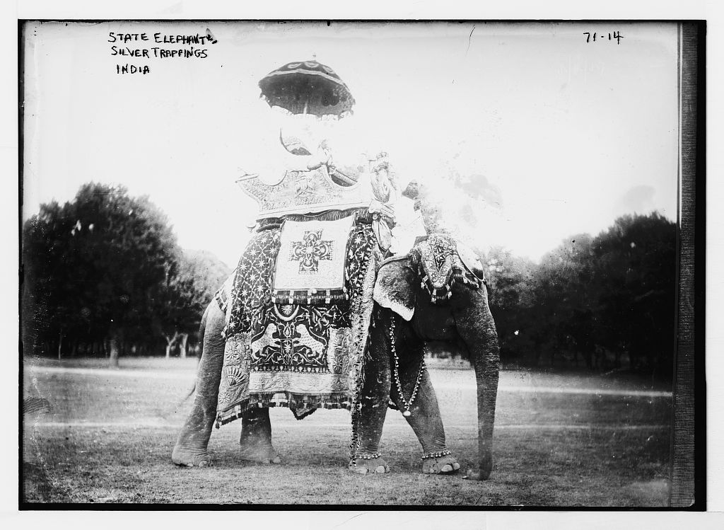 State elephant adorned with silver trappings