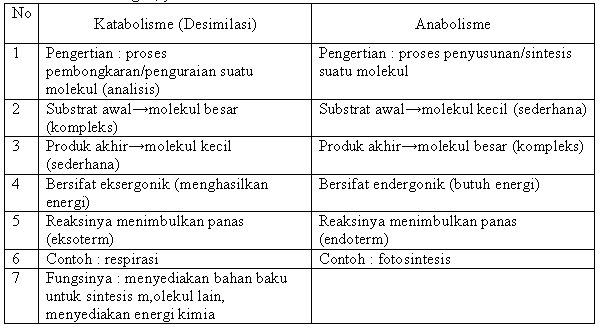 Penjelasan Metabolisme, Anabolisme Dan Katabolisme