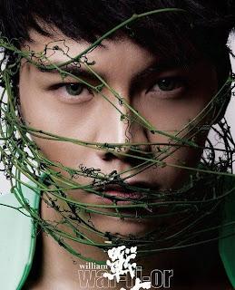 天空桌面:陳偉霆 (CitySky Wallpapers Download: William Chan): 七月 2009