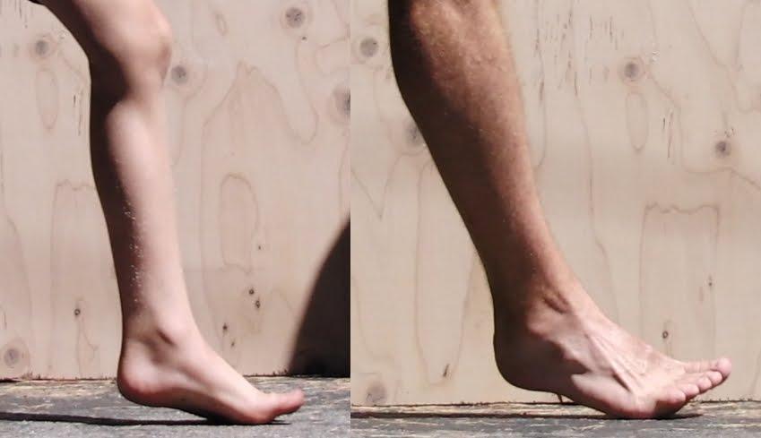 Barefoot Running Vs Shoes Lieberman Scholar