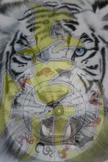 Mística del tigre, Francisco Acuyo