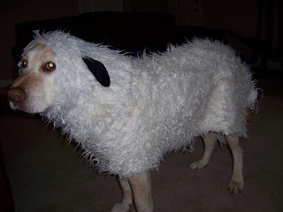 Sheep Costume For Dogs