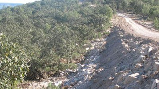 Semarnat autorizó dividir carretera en sierra huichola