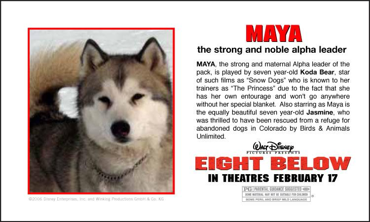jasper & jennifer: Eight Below.